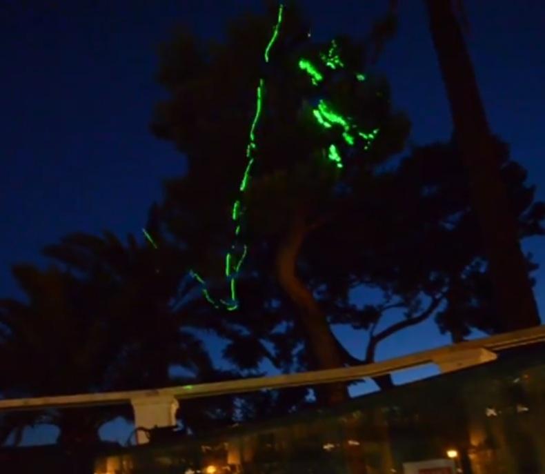 Daniel González, Babylon Disco Lemon Tree, installation view, TinaB, Capri, 2013