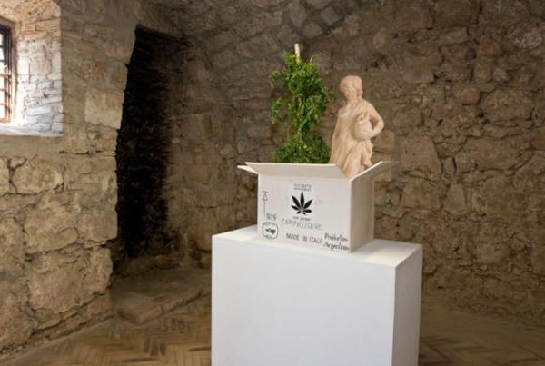 Daniel González_Time Box_2014_ceramic and tomato plant