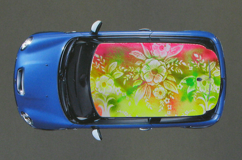 Grandmother Graffiti, Mini Cooper Design, 2009